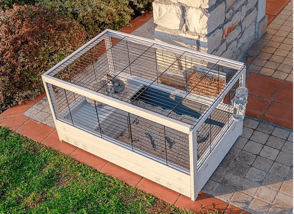 cage en bois lapin